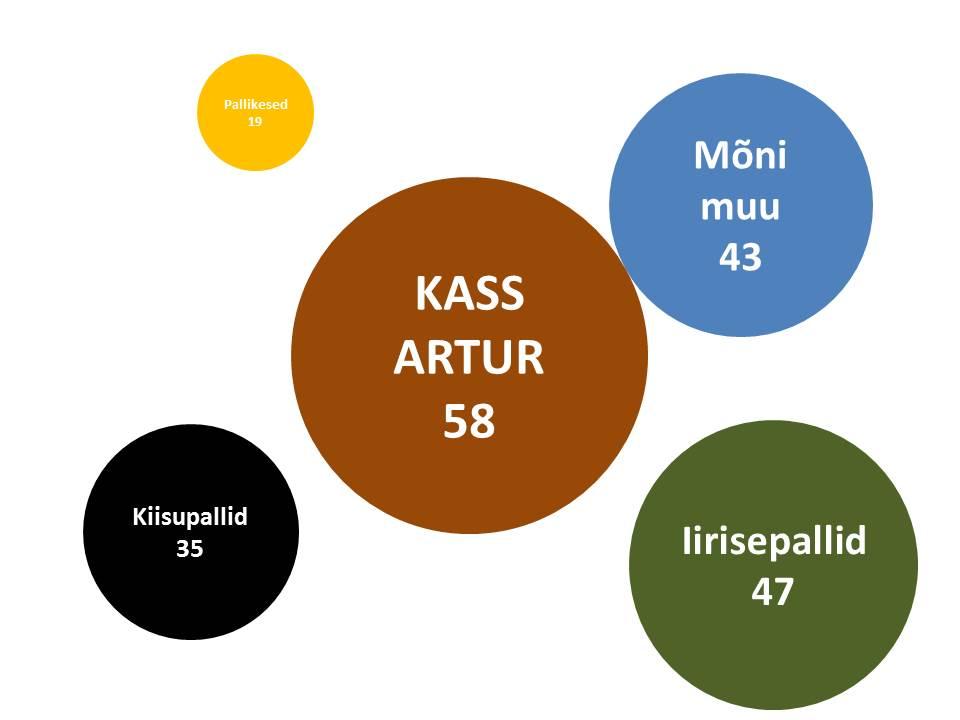 Kass Artur iirisepallid kliendiuuring